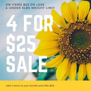4 FOR $25 SALE!